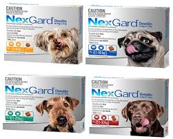Nexgard for Dogs - Nexgard Flea and Tick Treatment