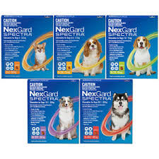 Nexgard Spectra for Dogs -  Flea, Ticks, Ear Mites, Worms & Heartworm Treatment