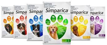 Simparica Flea and Tick Chews